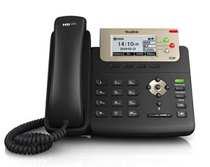 Picture of SIP-T23P IP Phone | Yealink
